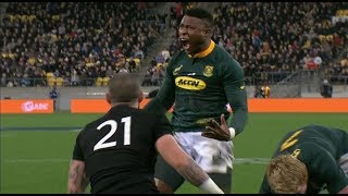 Best Springbok Rugby Championship Tries with isiXhosa Commentary
