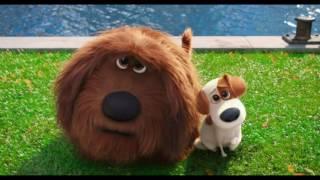 """Клип Трейлер """"Стиль собачки"""" Тайная жизнь домашних животных"""