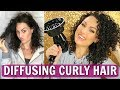 How to Diffuse Curly Hair   Onyx Professional Hair Dryer   THE GLAM BELLE