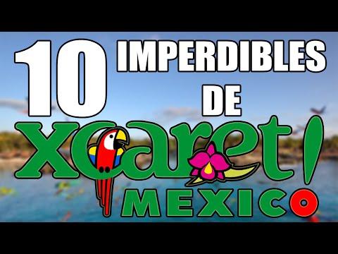 10 Actividades que no puedes perderte en Xcaret.