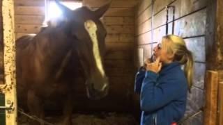 Girl loves her horse and the horse loves her