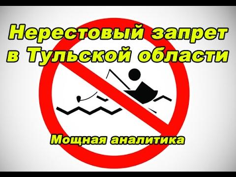 рыбалка в нерестовый запрет разрешенные методы