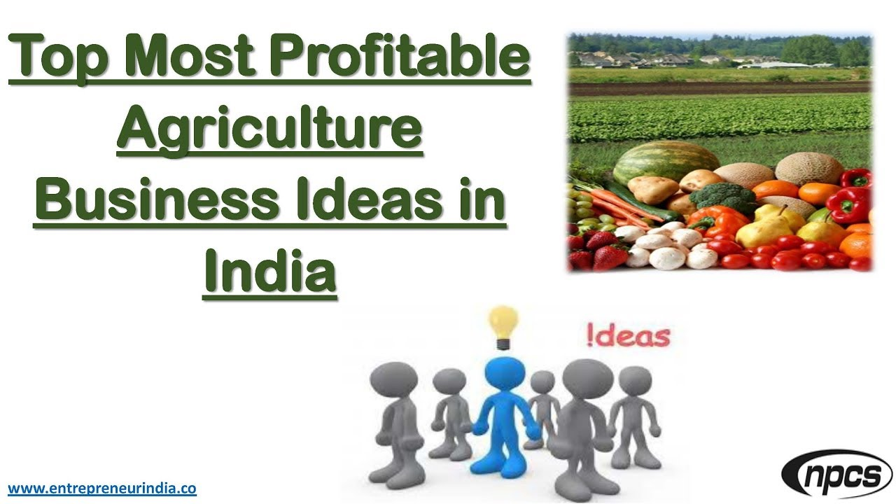 Top Most Profitable Agriculture Business Ideas in India - YouTube