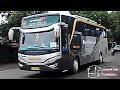 Telolet Bus HDD Dedy Jaya-Sri Agung-Fachrial Trans-Daffa Trans Hunting Di Area Kediri-Om Telolet!!