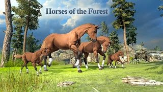 Horses of the Forest (by Wild Foot Games) Android Gameplay [HD]