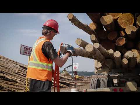 Dash Cams in Forestry Haul Operations