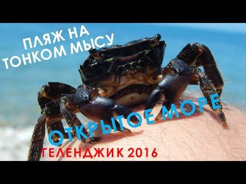 VLOG 080 Геленджик LIFE Тонкий мыс  Пляж в открытом море  Крабы