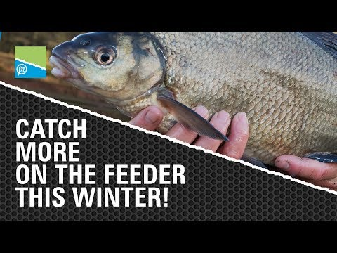Catch More on the Feeder This Winter!