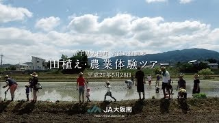 奇跡の復興米田植え体験ツアー JA大阪南