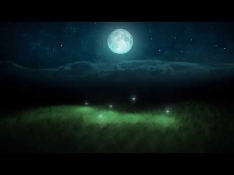 Watch 6 HOURS 🌘 Glowing Fireflies Summer Night HD Video Screensaver