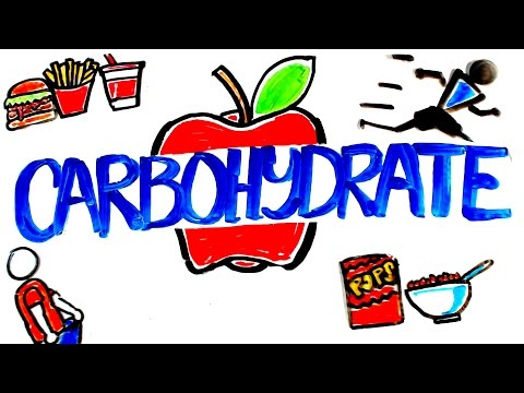 what-is-carbohydrate?