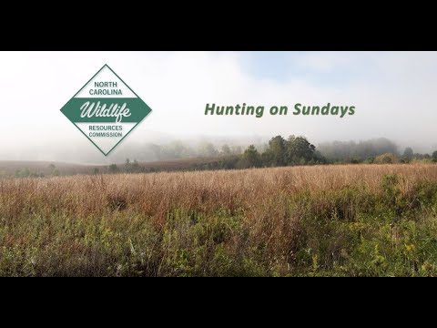 Hunting On Sundays In North Carolina
