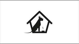 Отель для собак в Новосибирске. Зоогостиница «Территория Животных»