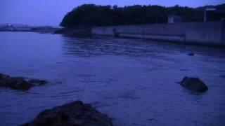 錦海湾ライズ 2010-7-10