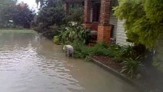Flash Flood 2011 Melbourne ( Pakenham / Victoria )
