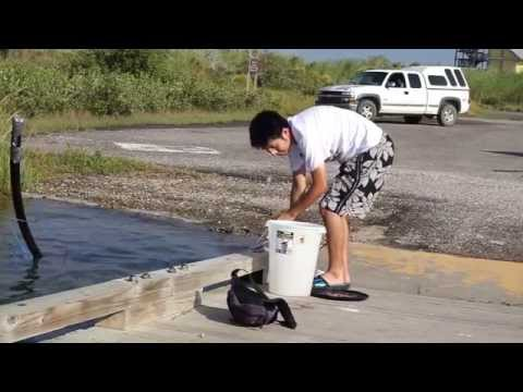 JSAdventure #25 - Grand Isle State Park with Hieu