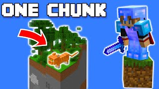 A TRAGEDY Occurred On The One Chunk Minecraft World :/ (#9) #shorts