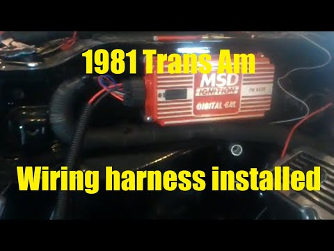 hqdefault 1981 trans am wiring harness installed youtube 1980 trans am wiring harness at n-0.co