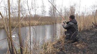 Открытие весеннего сезона на щуку Щука на поплавок Рыбалка в Беларуси