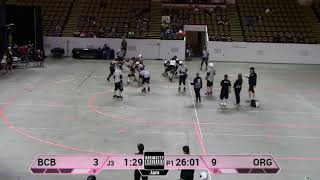 BrewHaHa 2018 Game 41 BCB vs Orangeville