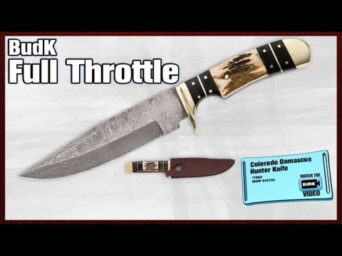 Colorado Damascus Hunter Knife - $89.99 - ON SALE - $49.98