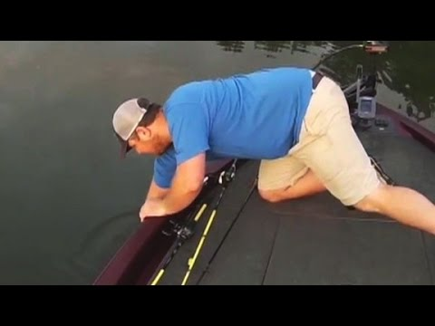 Surprising Catch Shocks Fisherman
