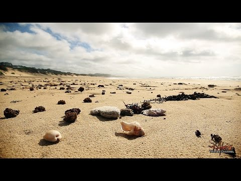 Rugged Rocks Beach Cottages - Accommodation Port Alfred South Africa - Africa Travel Channel