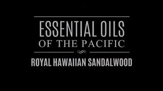 Essential Oils of the Pacific: Royal Hawaiian Sandalwood