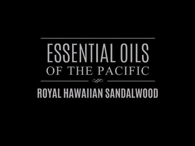 Essential Oils of the Pacific: Royal Hawaiian Sandalwood