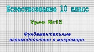 Естествознание 10 класс (Урок№15 - Фундаментальные взаимодействия в микромире.)