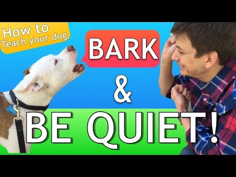 How to Teach your Dog to Bark and STOP BARKING! thumbnail