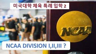 미국 대학 체육 특례 입학 PT 2  - NCAA Division이란 무엇인가?