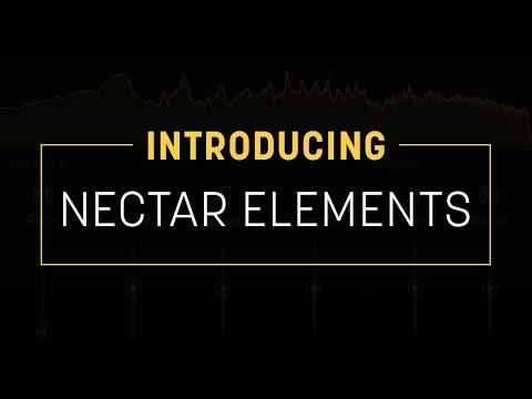 iZotope Elements Suite – Time+Space