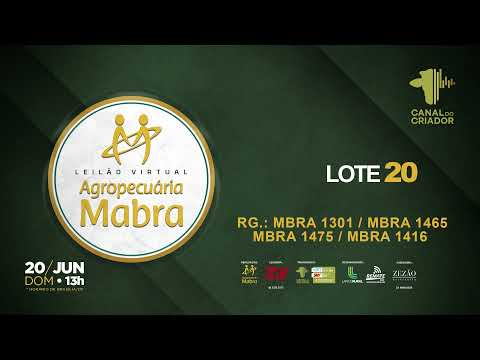 LOTE 20 1301 1465 1475 1416