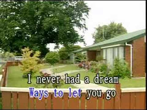 never had a dream come true - lyricks