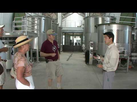 Copain Wines Tasting Experience