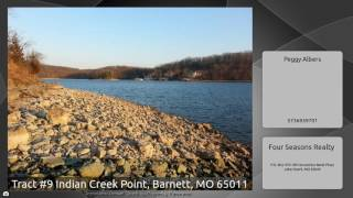 Tract #9 Indian Creek Point, Barnett, MO 65011