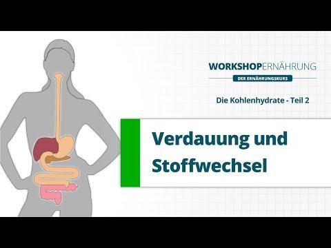 KOHLENHYDRATE (2/6): Verdauung, Stoffwechsel und das Hormon Insulin | Workshop Ernährung