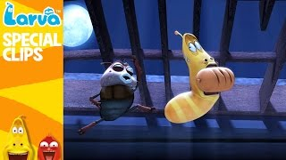 [Official] Classical Music - Fun Clips from Animation LARVA