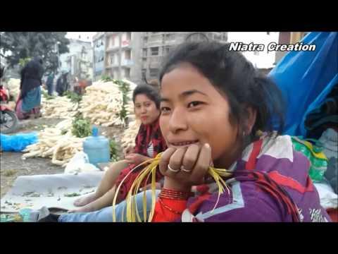 white radish business in kathmandu