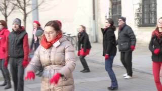 Happening One billion rising 2015 v Brně