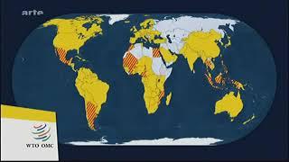 Wer kontrolliert den Welthandel - ARTE - Mit offenen Karten