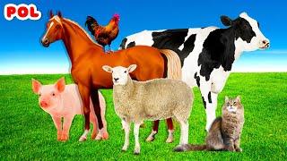 Zwierzęta hodowlane dla dzieci - Odgłosy zwierząt - bajki dla dzieci