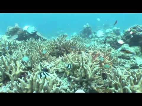 海洋國家公園管理處