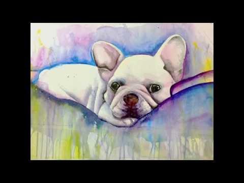 法国斗牛水彩画 French bulldog watercolor painting
