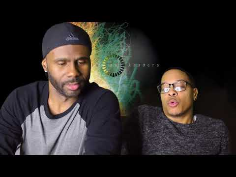 Animals As Leaders- ''CAFO'' (REACTION!!!)