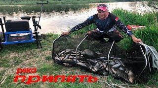 Река Припять.Незабываемая рыбалка.