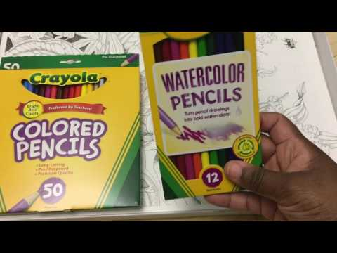 Quick Upboxing of Crayola Color Escapes Garden Edition and Bee Paper AquaBee