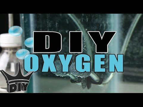HOW TO: $2 DIY Aquarium Oxygen TUTORIAL