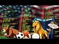 Best online betting videos - YouTube